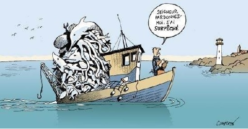 You are currently viewing Evolution du monde de la pêche